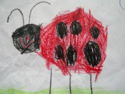 2020-03-24-Insekten
