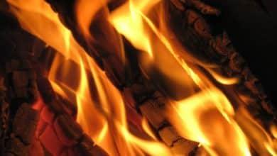 Photo of Brand in Waldgebiet schnell unter Kontrolle