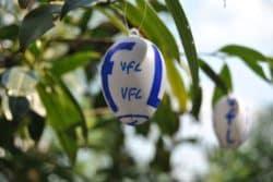 Der VFL Gummersbach ruft seine Fans zu Spenden für die Oberbergische Tafel auf.