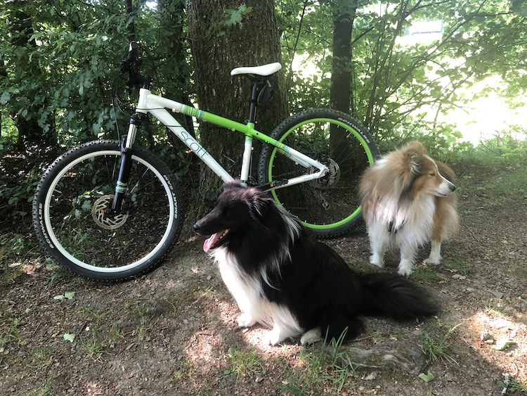 2020-06-02-Fahrrad
