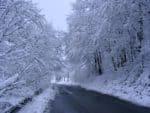 2021-04-06-Schneefall