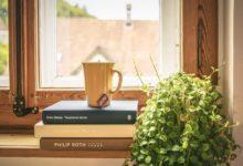 2021-06-17-Zimmerpflanze