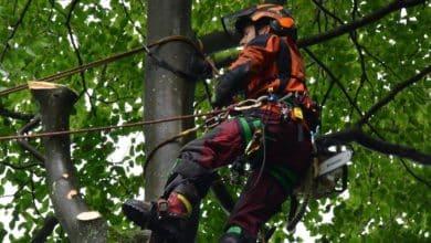 2021-09-20-Waldjugend
